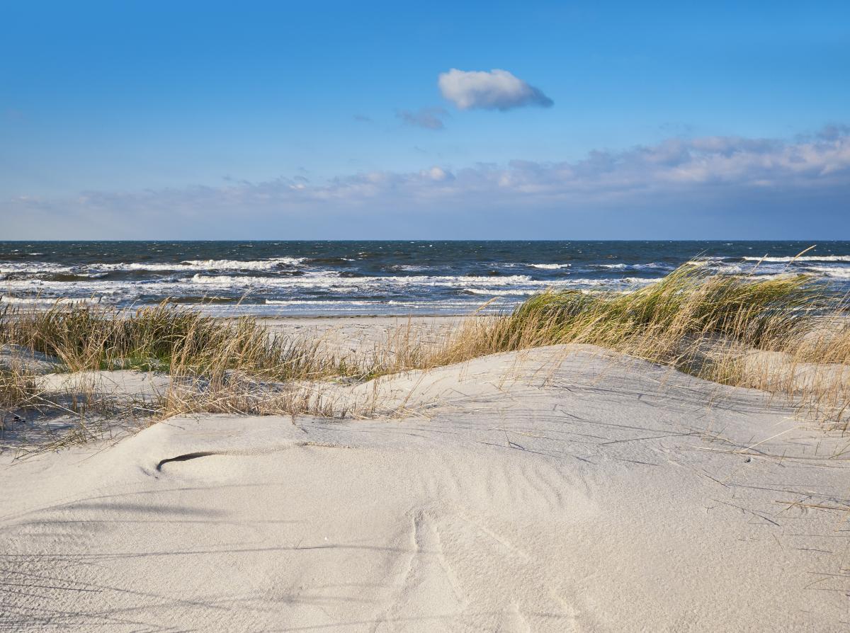 Få dit sommerhus i Klitmøller: Vesterhavspark